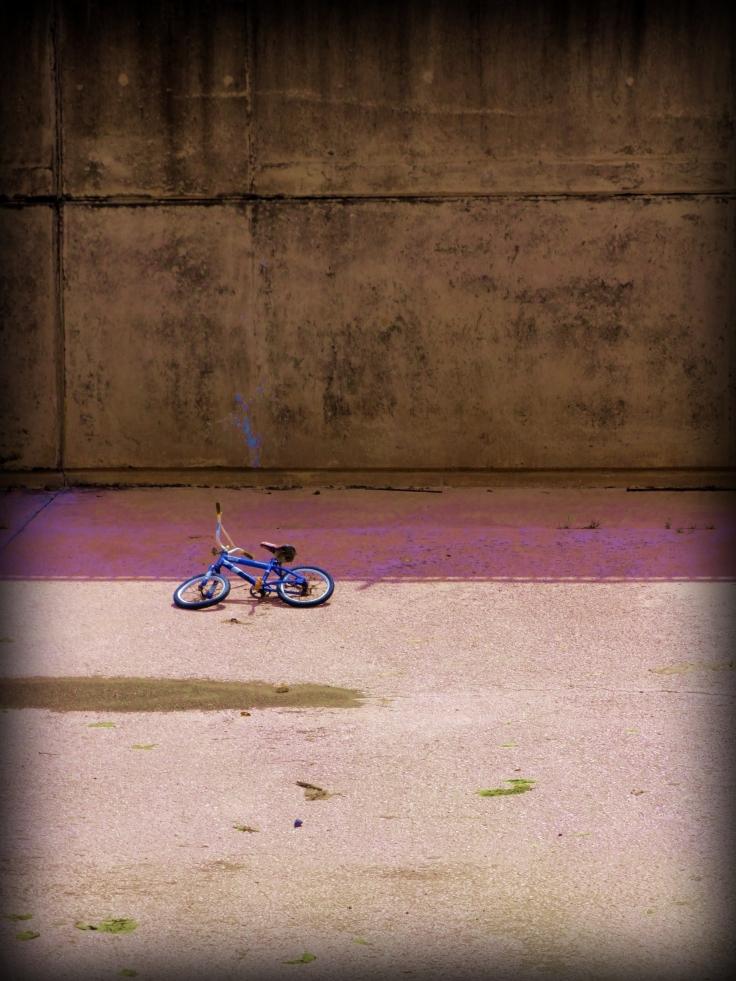 Bicicleta asesinada...