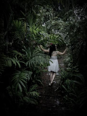 Hortensia_104_Pro Marunga
