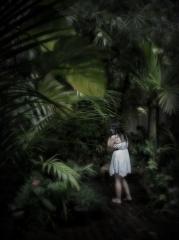 Hortensia_110_Pro Marunga