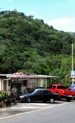 Vista al Rio_075_Adjuntas