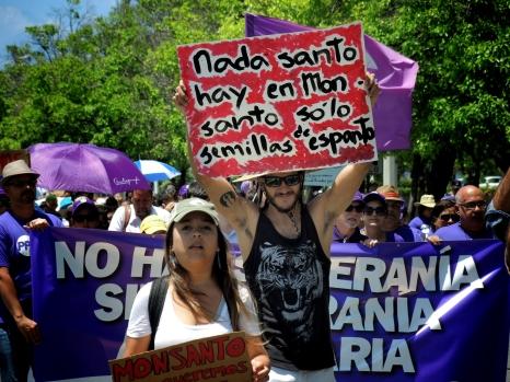 No Monsanto_20160518-138_Ponce - Copy