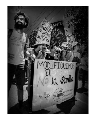 No Monsanto_20160524-014_Ponce