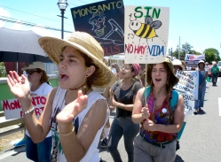No Monsanto_20160524-056_Ponce - Copy