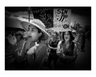 No Monsanto_20160524-056_Ponce