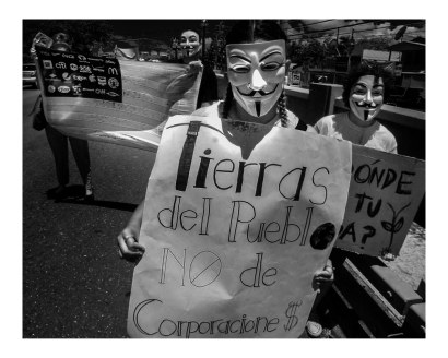 No Monsanto_20160524-065_Ponce